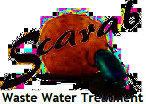 Scarab Waste Water International